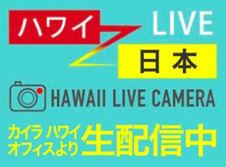 インフォメーション ハワイグルメコンテスト金賞受賞/【公式
